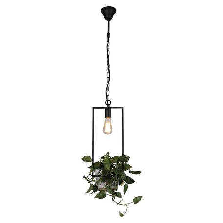 Подвесной светильник Favourite Situla 1975-1P, 1xE27x60W, черный, металл со стеклом/пластиком