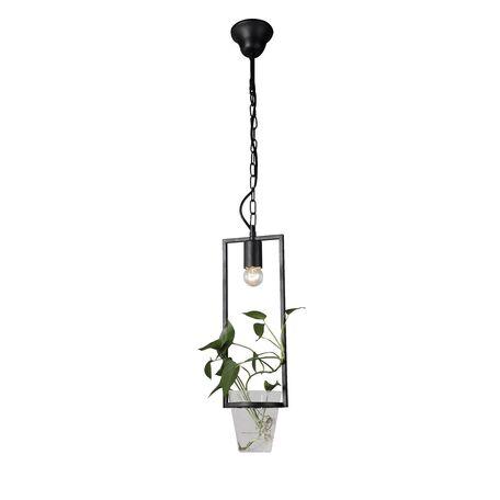 Подвесной светильник Favourite Situla 1976-1P, 1xE27x60W, черный, металл со стеклом