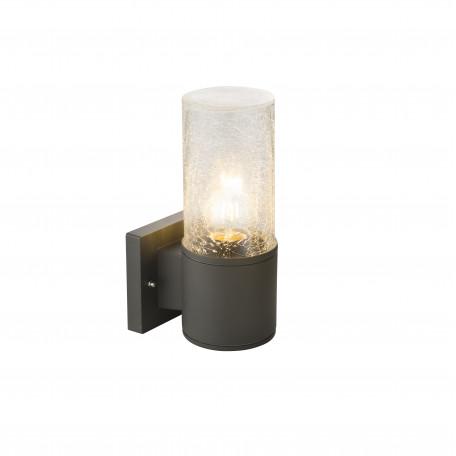 Настенный светильник Globo Nina 32410, IP54, 1xE27x60W, металл, стекло