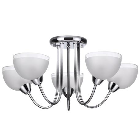 Потолочная люстра Lumion Alora 4461/5C, 5xE14x60W, хром, белый, металл, стекло