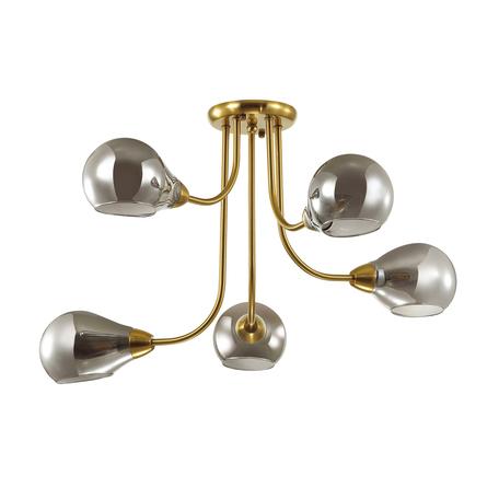 Потолочная люстра Lumion Mason 4445/5C, 5xE14x40W, матовое золото, дымчатый, металл, стекло