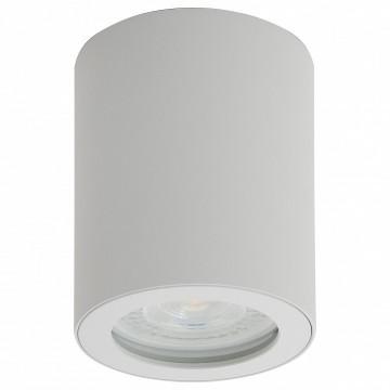 Потолочный светильник Denkirs DK3007-WH, IP44, 1xGU10x50W, белый, металл