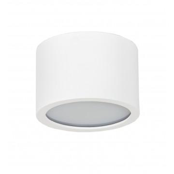Потолочный светильник Topdecor Tubo IP P1 10, IP44, 1xGX53x50W, белый, металл, пластик