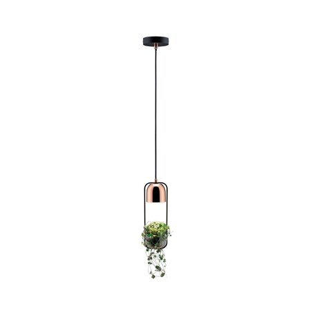Подвесной светильник Paulmann Neordic Fanja 79749, 1xGU10x20W, черный, медь, металл