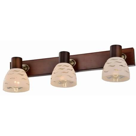 Бра с регулировкой направления света Toplight Shayla TL3730Y-03BB, 3xE14x40W, коричневый с бронзой, белый, металл, стекло