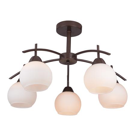 Потолочная люстра Toplight Molly TL3770X-05DB, 5xE27x40W, коричневый, белый, металл, стекло