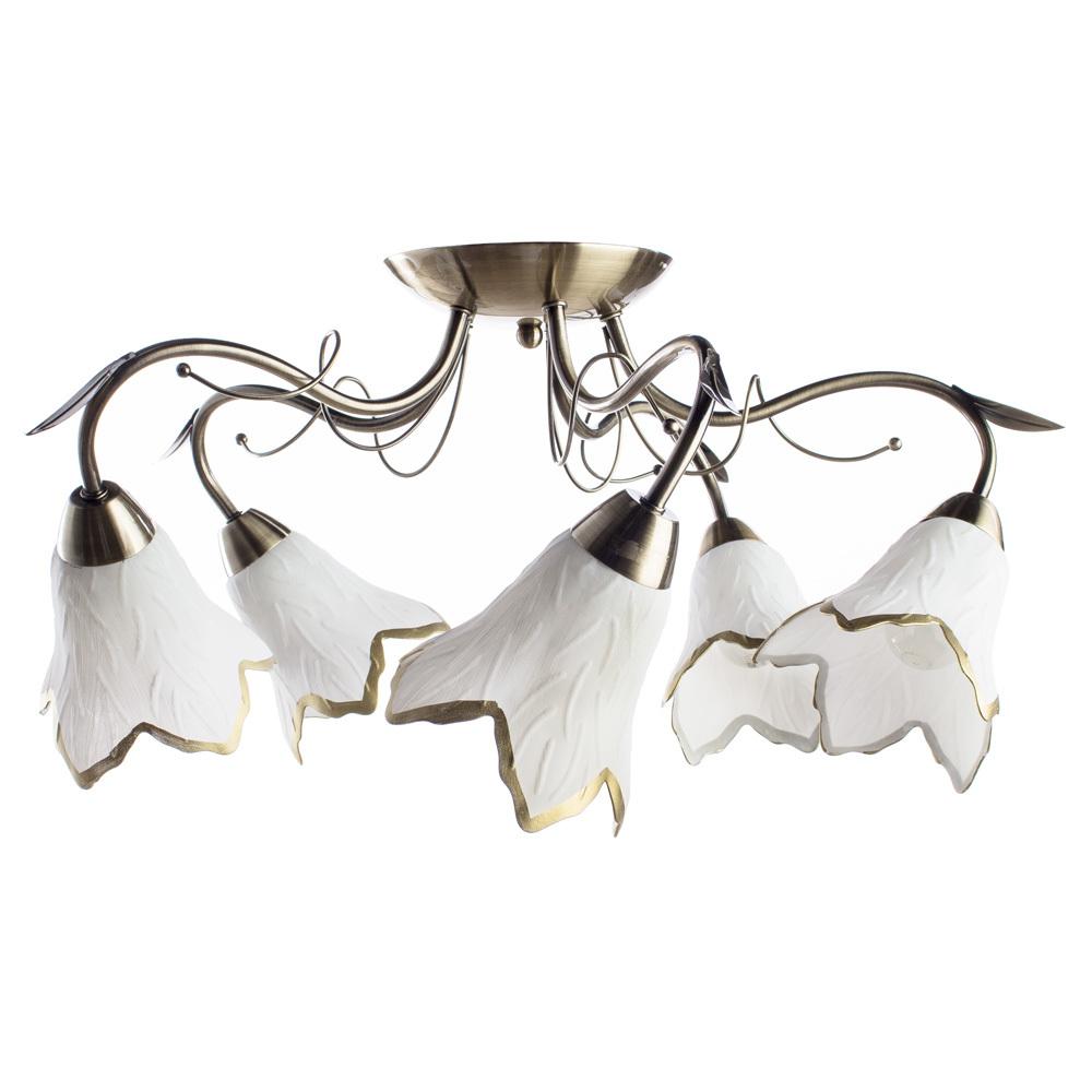 Потолочная люстра Arte Lamp Barbara A6066PL-5AB, 5xE27x60W, бронза, белый, металл, стекло - фото 1