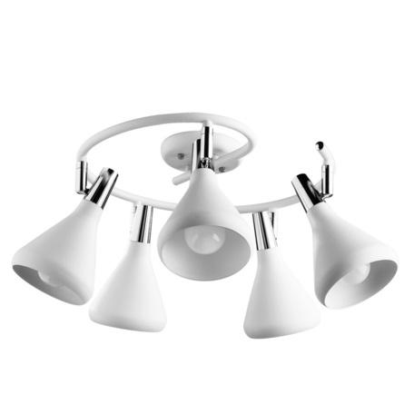 Потолочная люстра с регулировкой направления света Arte Lamp Ciclone A9155PL-5WH, 5xE14x40W, белый, хром, металл