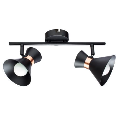 Потолочный светильник с регулировкой направления света Arte Lamp Baltimore A1406AP-2BK, 2xE14x40W, черный, металл