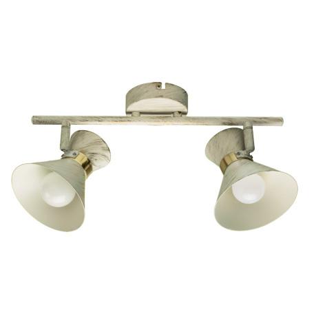 Потолочный светильник с регулировкой направления света Arte Lamp Baltimore A1406AP-2WG, 2xE14x40W, белый с золотой патиной, металл