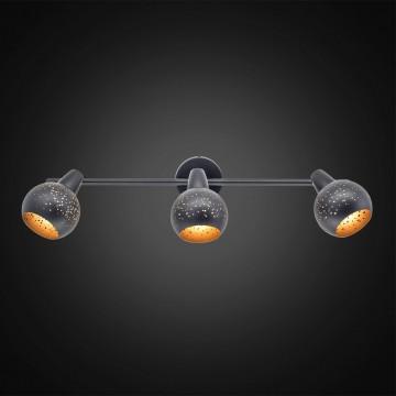Настенный светильник с регулировкой направления света Citilux Деко CL504532, 3xE14x60W, черный, металл - миниатюра 2