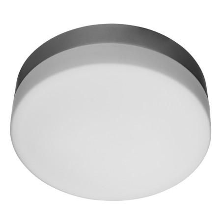 Потолочный светильник Arte Lamp Aqua A3211PL-2SI, IP44, 2xE27x60W, серебро, белый, металл, стекло