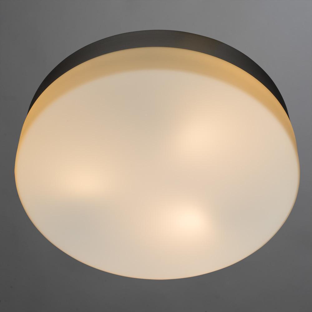 Потолочный светильник Arte Lamp Aqua A3211PL-3SI, IP44, 3xE27x60W, серебро, белый, металл, стекло - фото 2
