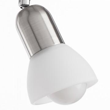 Потолочный светильник с регулировкой направления света Arte Lamp Falena A3115PL-2SS, 2xE14x40W, серебро, белый, металл, стекло - миниатюра 3