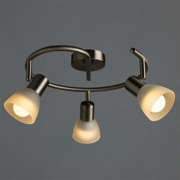 Потолочная люстра с регулировкой направления света Arte Lamp Parry A5062PL-3SS, 3xE14x40W, серебро, матовый, металл, стекло