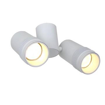 Потолочный светильник с регулировкой направления света Favourite Kinescope 2453-2U, 2xGU10x5W