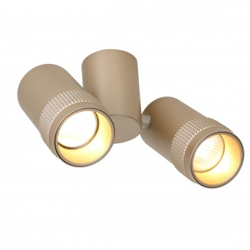 Потолочный светильник с регулировкой направления света Favourite Kinescope 2455-2U, 2xGU10x5W