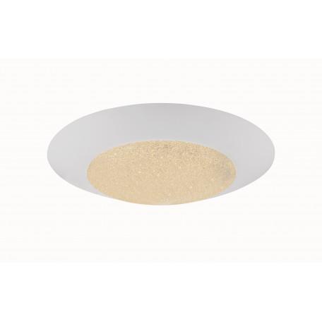 Потолочный светодиодный светильник Globo Mio 49002-24, LED 24W 1700-2400lm, металл, пластик, стекло
