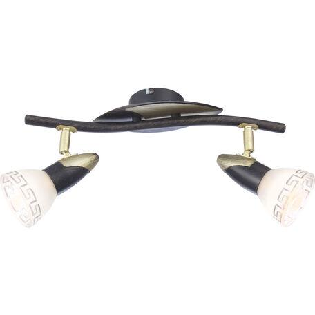 Потолочный светильник с регулировкой направления света Globo Novara 5449-2, 2xE14x40W, металл, стекло