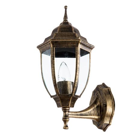 Настенный фонарь Arte Lamp Pegasus A3151AL-1BN, IP44, 1xE27x60W, черненое золото, прозрачный, черный с золотой патиной, металл, металл со стеклом