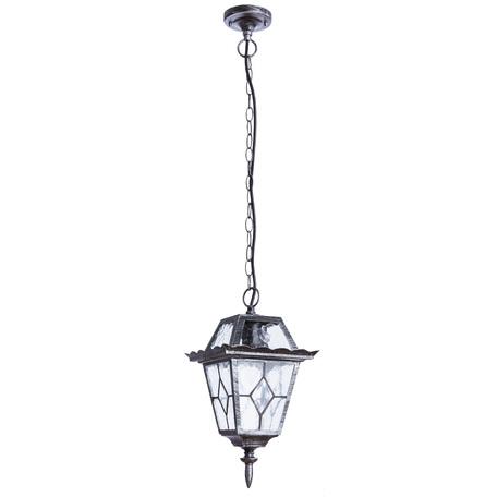 Подвесной светильник Arte Lamp Paris A1355SO-1BS, IP44, 1xE27x75W, черненое серебро, прозрачный, металл, стекло