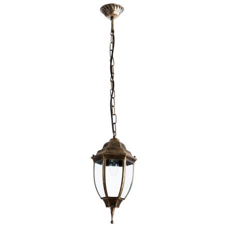 Подвесной светильник Arte Lamp Pegasus A3151SO-1BN, IP44, 1xE27x60W, черненое золото, прозрачный, черный с золотой патиной, металл, металл со стеклом