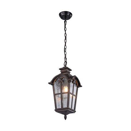 Подвесной светильник Favourite Bristol 2036-1P, IP44, 1xE27x60W, коричневый, прозрачный, металл, ковка, металл со стеклом