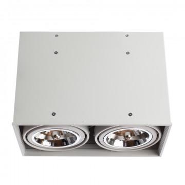 Потолочный светильник Arte Lamp Cardani Grande A5936PL-2WH, 2xG53AR111x50W, белый, металл