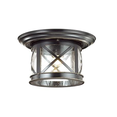 Потолочный светильник Odeon Light Sation 4045/1C, IP44, 1xE27x60W, черный с золотой патиной, прозрачный, металл, ковка, металл со стеклом
