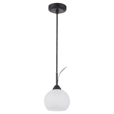 Подвесной светильник Lussole Loft Bagheria LSF-6296-01, IP21, 1xE14x40W, коричневый, белый, металл, стекло