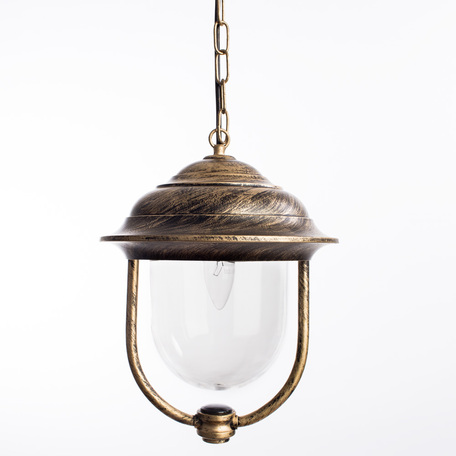 Подвесной светильник Arte Lamp Barcelona A1485SO-1BN, IP44, 1xE27x75W, черный с золотой патиной, прозрачный, черненое золото, металл, пластик