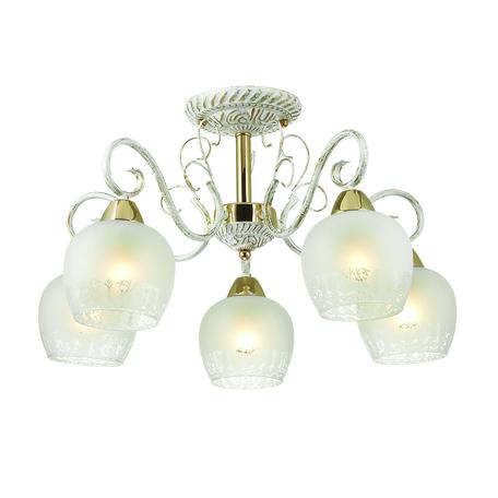 Потолочная люстра Lumion Biancopa 3505/5C, 5xE27x60W, белый с золотой патиной, золото, матовый, металл, стекло