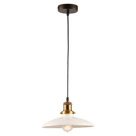 Подвесной светильник Lussole Loft Glen Cove LSP-9605, IP21, 1xE27x60W, черный, белый, металл - миниатюра 1
