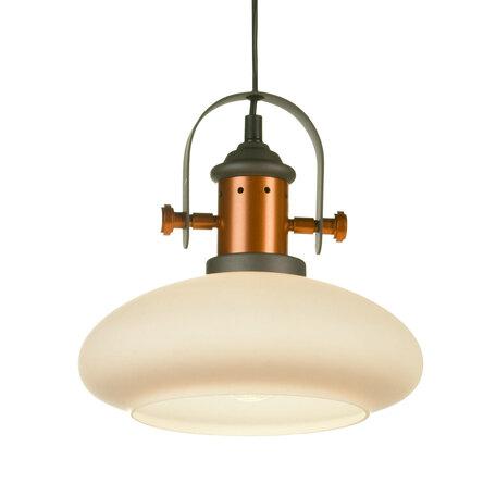 Подвесной светильник Lussole Loft Binghamton LSP-9845, IP21, 1xE27x60W, черный, белый, металл, стекло