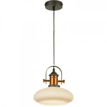 Подвесной светильник Lussole Loft Binghamton LSP-9845, IP21, 1xE27x60W, черный, белый, металл, стекло - миниатюра 2