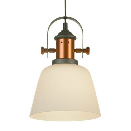 Подвесной светильник Lussole Loft Binghamton LSP-9846, IP21, 1xE27x60W, черный, белый, металл, стекло