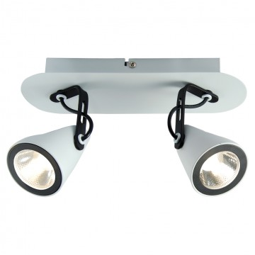 Потолочный светильник с регулировкой направления света Lussole Loft Merano LSN-4101-02