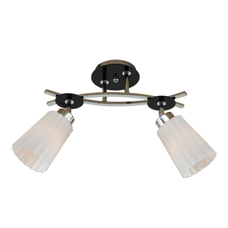 Потолочный светильник с регулировкой направления света Citilux Димона CL148121, 2xE27x75W, черный, белый, металл, стекло