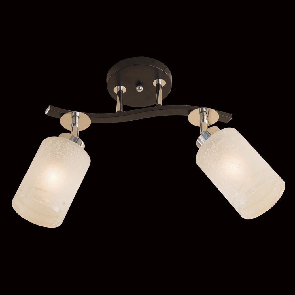 Потолочный светильник с регулировкой направления света Citilux Фортуна CL156121, 2xE27x75W, венге, хром, белый, металл, стекло - фото 2