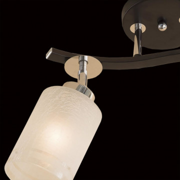 Потолочный светильник с регулировкой направления света Citilux Фортуна CL156121, 2xE27x75W, венге, хром, белый, металл, стекло - миниатюра 4