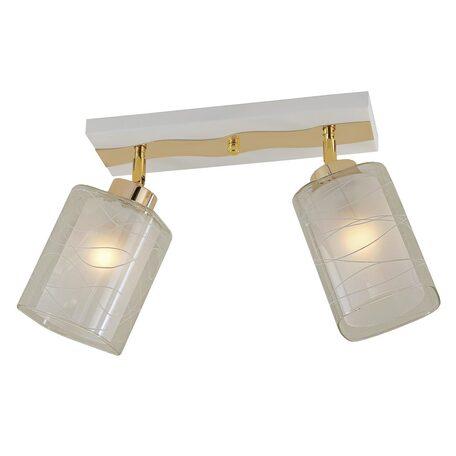 Потолочный светильник с регулировкой направления света Citilux Прима CL160122, 2xE27x75W, белый, золото, прозрачный, металл, стекло
