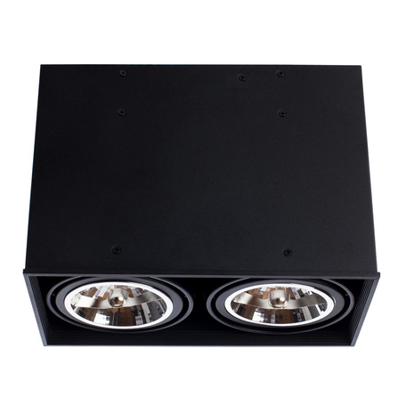 Arte Lamp Cardani Grande A5936PL-2BK, 2xG53x50W, черный