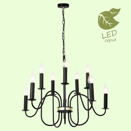 Подвесная люстра Lussole LGO Roosevelt GRLSP-8198, IP21, 10xE14x7W, черный, металл