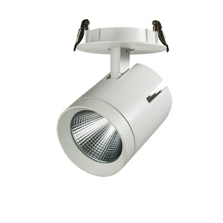 Встраиваемый светодиодный светильник с регулировкой направления света Novotech Spot Seals 357542, LED 40W 3000K 3700lm, белый, металл