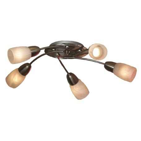 Потолочная люстра Lussole Cevedale LSQ-6907-05, IP21, 5xE14x40W, никель, белый, металл, стекло - миниатюра 1