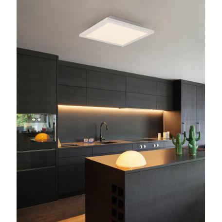 Потолочный светодиодный светильник с пультом ДУ Globo Rosi 41604D2F, LED 30W 3000-6000K, металл, пластик