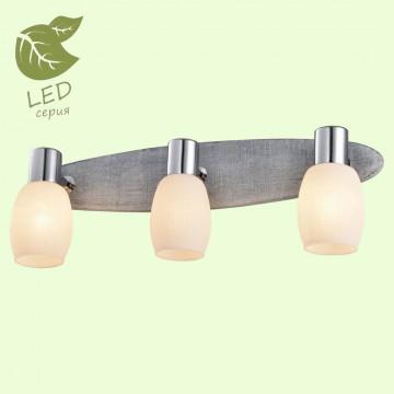 Потолочный светильник с регулировкой направления света Lussole LGO Hackberry GRLSP-0053