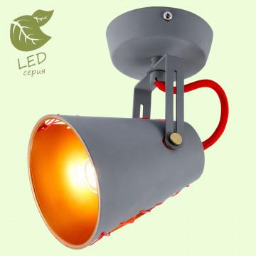 Потолочный светильник с регулировкой направления света Lussole Loft Bethel GRLSP-8020