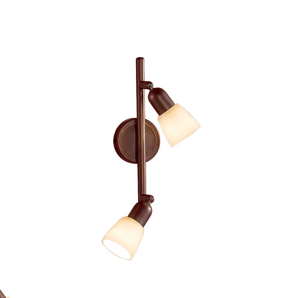 Потолочный светильник с регулировкой направления света Citilux Ронда CL506524, 2xE14x60W, коричневый, бежевый, металл, стекло - фото 1