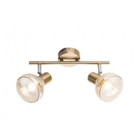 Потолочный светильник с регулировкой направления света Globo Donto 54922-2, 2xE14x40W, металл, стекло